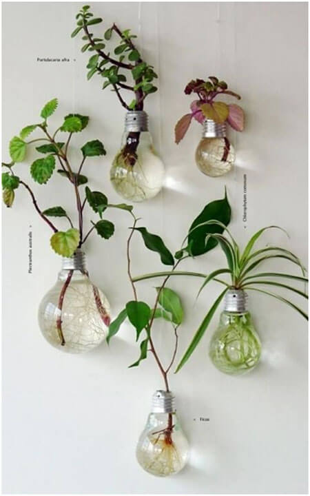 Image Credit: http://recyclenation.com/2011/08/planters-recycle-light-bulbs