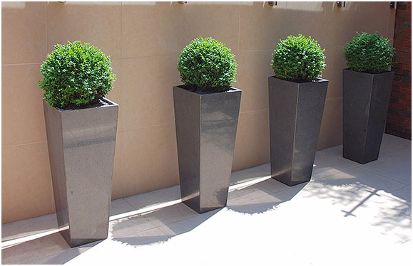 Liven-Up-Boring-Corners-with-Container-Planting