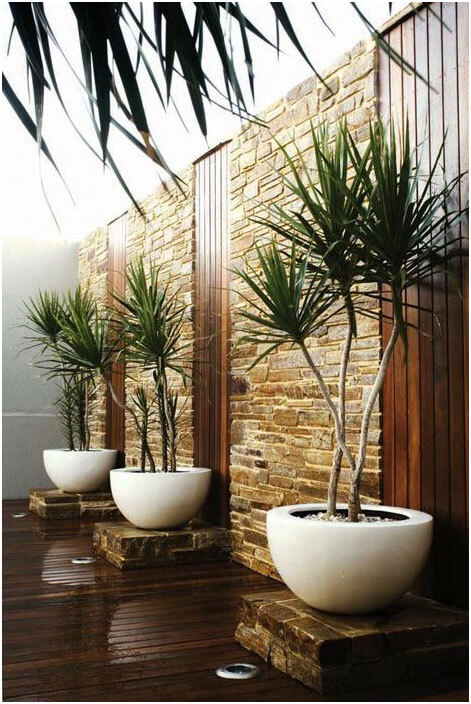 Place-Woody-Plants-in-Containers-for-More-Design-Options