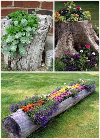 Tree-Stump-Planters