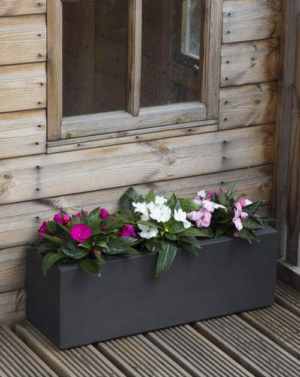 Moscow Planters